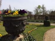 Botanischer Garten2