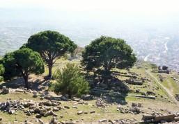 Pergamon (1)