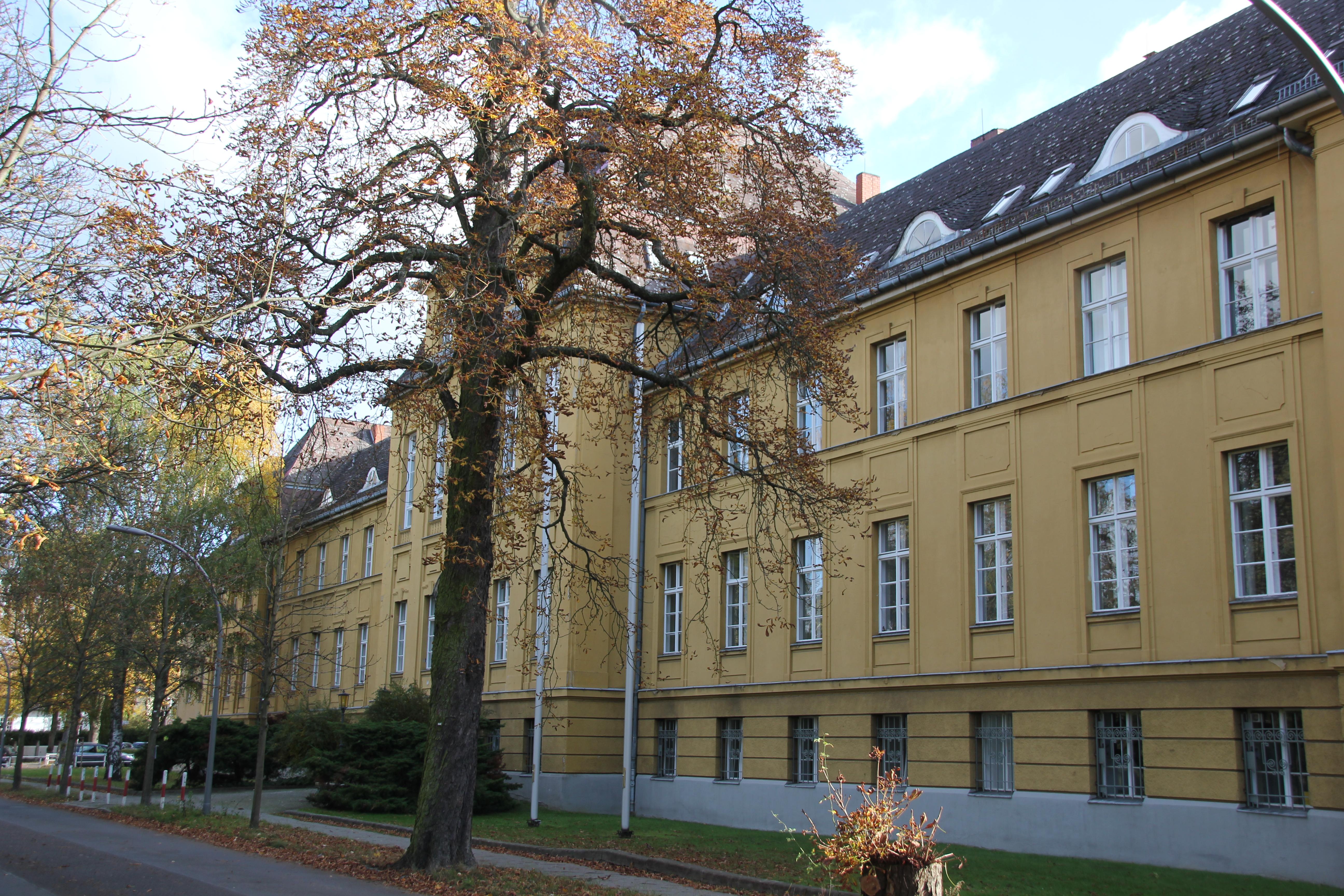 Singletreff ab 50 berlin LEBENSFREUDE 50plus Partnersuche mit Partnerbörse und Single Treff ab 50+